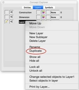 Layer Duplicate