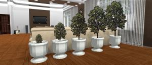 Plant Sizing